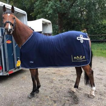 AZ Sponsoring Paardensport